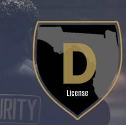 Class D Security License Florida